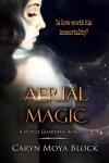 Aerial Magic copy