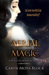 Aerial Magic copy