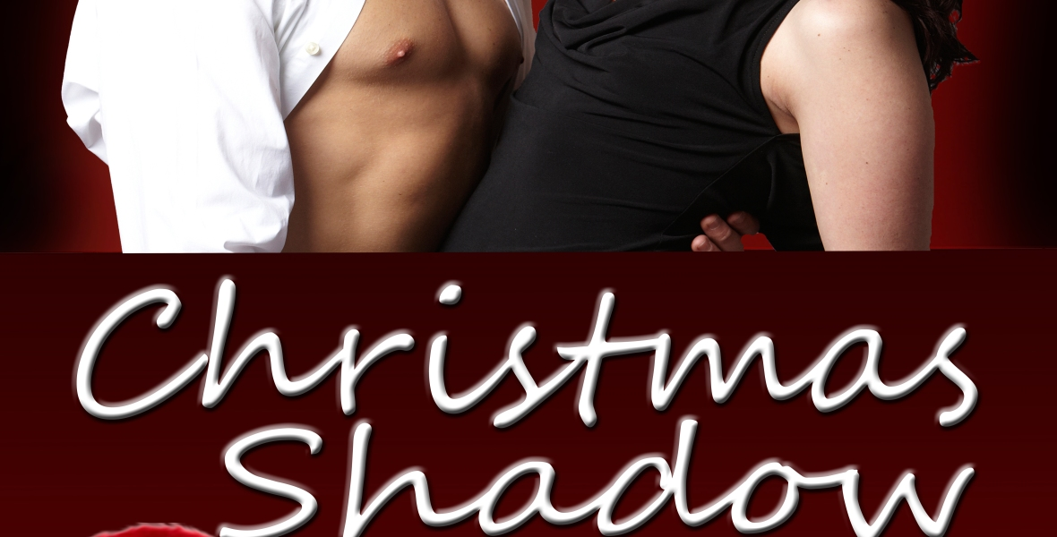https://carynmoyablock.com/books/christmas-shadow/